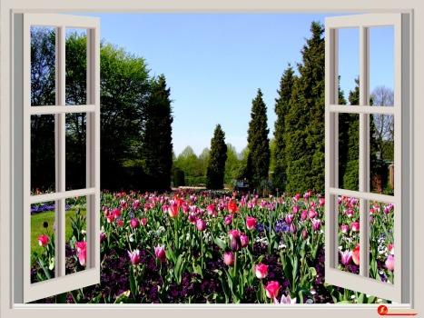 window-174602_960_720
